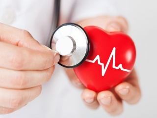 Chinese, American scientists identify seven measures to predict heart disease risk
