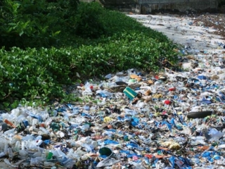 G-20 agrees on int'l framework to reduce marine plastic pollution