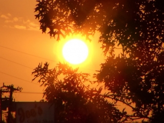Scorching heat alert announced in Atyrau region