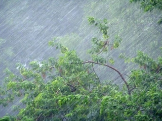 Storm alert in effect across 4 regions of Kazakhstan